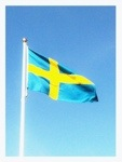 Online Swedish language-tutoring